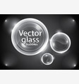 glossy bubbles vector image