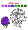 hand drawn aster flower coloring book page vector image vector image