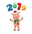 New year pig and 2019 numbers