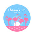 round card with pink flamingos on light blue vector image