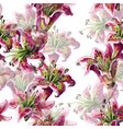 seamless pattern with lilies flowers vector image