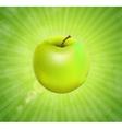 Sweet Tasty Apple vector image vector image