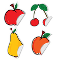fruit sticker vector image