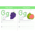 g for grape and for guava vector image vector image