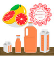 the theme grapefruit vector image vector image