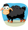 black sheep cartoon vector image vector image