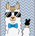 cool alpaca with sunglasses vector image