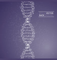 dna molecule back vector image