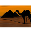 egypt the great pyramids of giza vector image