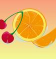 juicy mix vector image vector image
