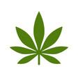 marijuana or cannabis leaf icon logo vector image vector image