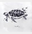 monotype turtle black vector image