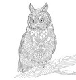 owl adult coloring page vector image vector image