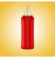 Red Boxing Bag vector image