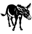 donkey black white vector image