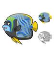 Emperor Angelfish vector image vector image