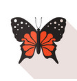 flat butterfly vector image vector image