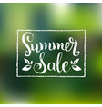 handwritten summer sale on vector image vector image