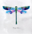 monotype vivid dragonfly vector image
