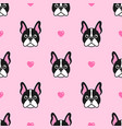 pattern with cute dogs and pink hearts vector image