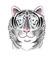 portrait tiger vector image vector image