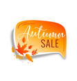 autumn sale chat bubble with orange leaves vector image