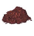 cacao powder vector image