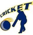 cricket batsman batting ball vector image vector image