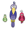 set of cute cartoon colored birds with black vector image