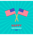 Starburst background flag Independence day vector image