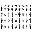 black silhouettes cactus vector image vector image