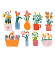 colorful spring flowers in vases set bouquets in vector image vector image