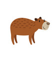 cute brown capybara icon vector image