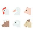 farm animal flat style icon vector image vector image