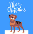 merry christmas greeting card with brown dog smile vector image