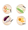 Onions Bitter Squash Eggplant and Butternut vector image vector image