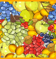 seamless fruit background with apricots apples vector image