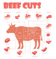beef cuts chart vector image vector image