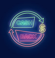 cash back vector image