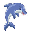 funny cute happy dolphin isolated vector image