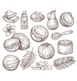 hand drawn coconut summer sketch beach palm vector image vector image