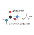 NH2COONH4 ammonium carbamate molecule vector image vector image