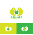 organic fruit emblem two palms apple vector image