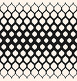 pattern with halftone transition mesh vector image vector image