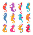 seahorse seafish character or cartoon sea vector image vector image