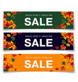 simple vouchers for autumn sale vector image vector image