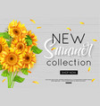 summer banner with realistic sunflower for online vector image vector image