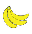 yellow banana symbol mascot best for print vector image