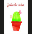 cactus isolated on white background watercolor vector image vector image