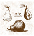 digital detailed pear hand drawn vector image vector image